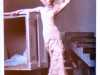 slide showing wedding dress by Alexander McQueen 2006