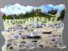 LITTLE TERNS AT GRONANT SAND by Suzanne Owen