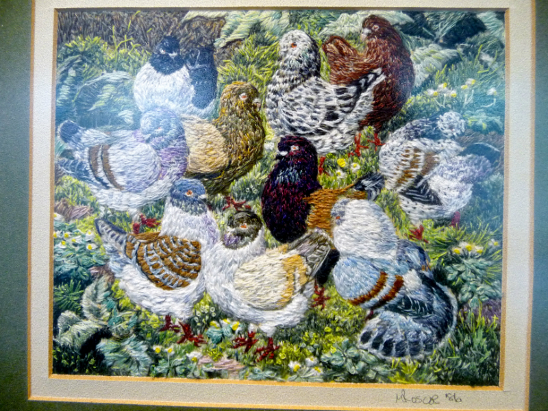 MODENA PIGEONS (after Tunnicliffe), polyester thread