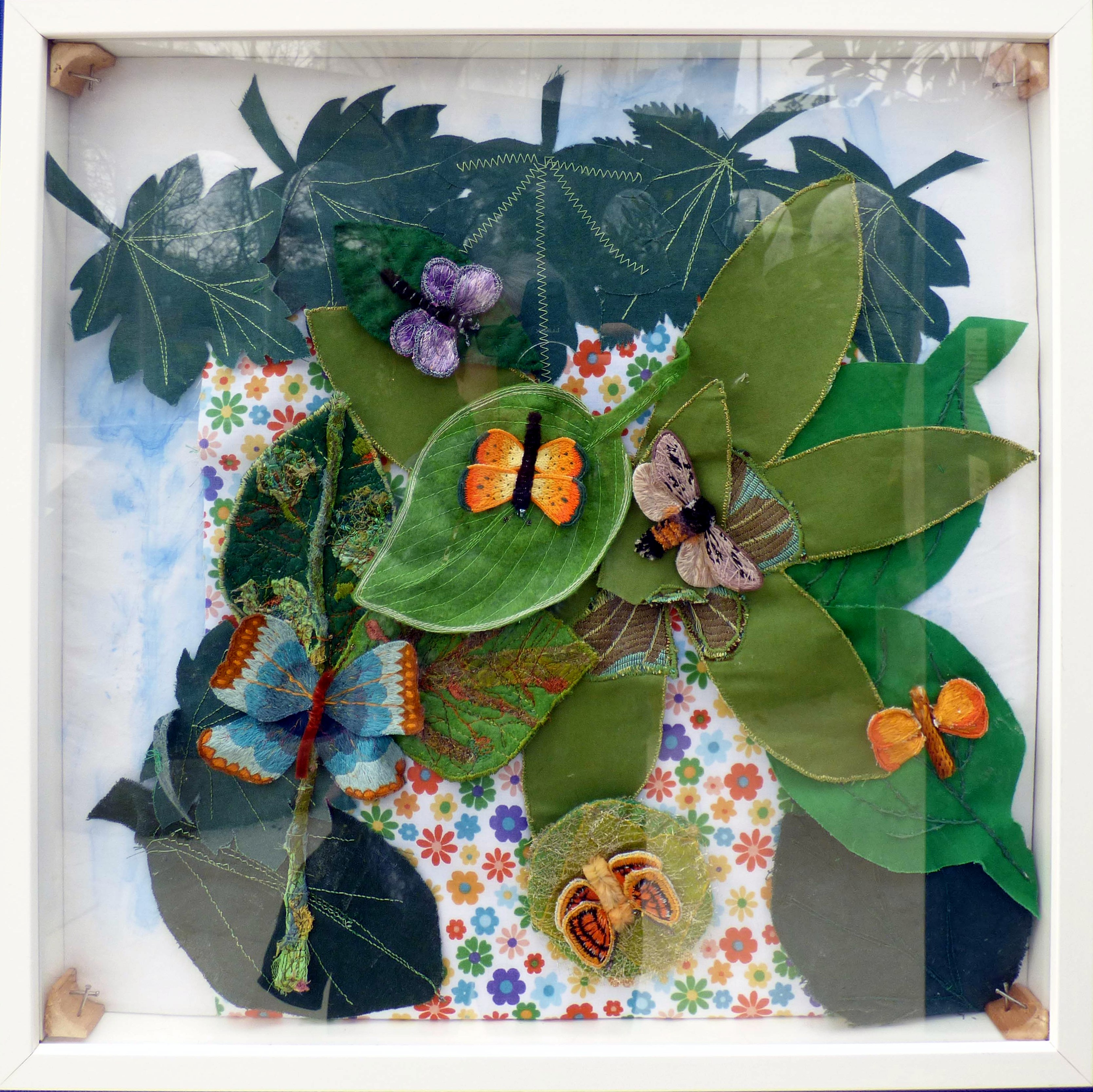 LEPIDOPTERA CASE, Endeavour exhibition at Sefton Park Palm House 2019. Butterflies by Vicky Williams, Brenda Muller, Pauline Staples, Michele King, Karen Scott and Mal Ralston