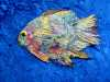 "student's work at ""Fantastic Fish"" workshop by Nikki Parmenter"