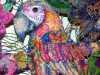 (detail) KAMADEVA, MARY AND DURER'S PARROT by Nikki Parmenter, Gawthorpe Hall, Sept 2020