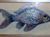 MISS RACHEL'S SILVER FISH by Nikki Parmenter, Gawthorpe Hall, Sept 2020