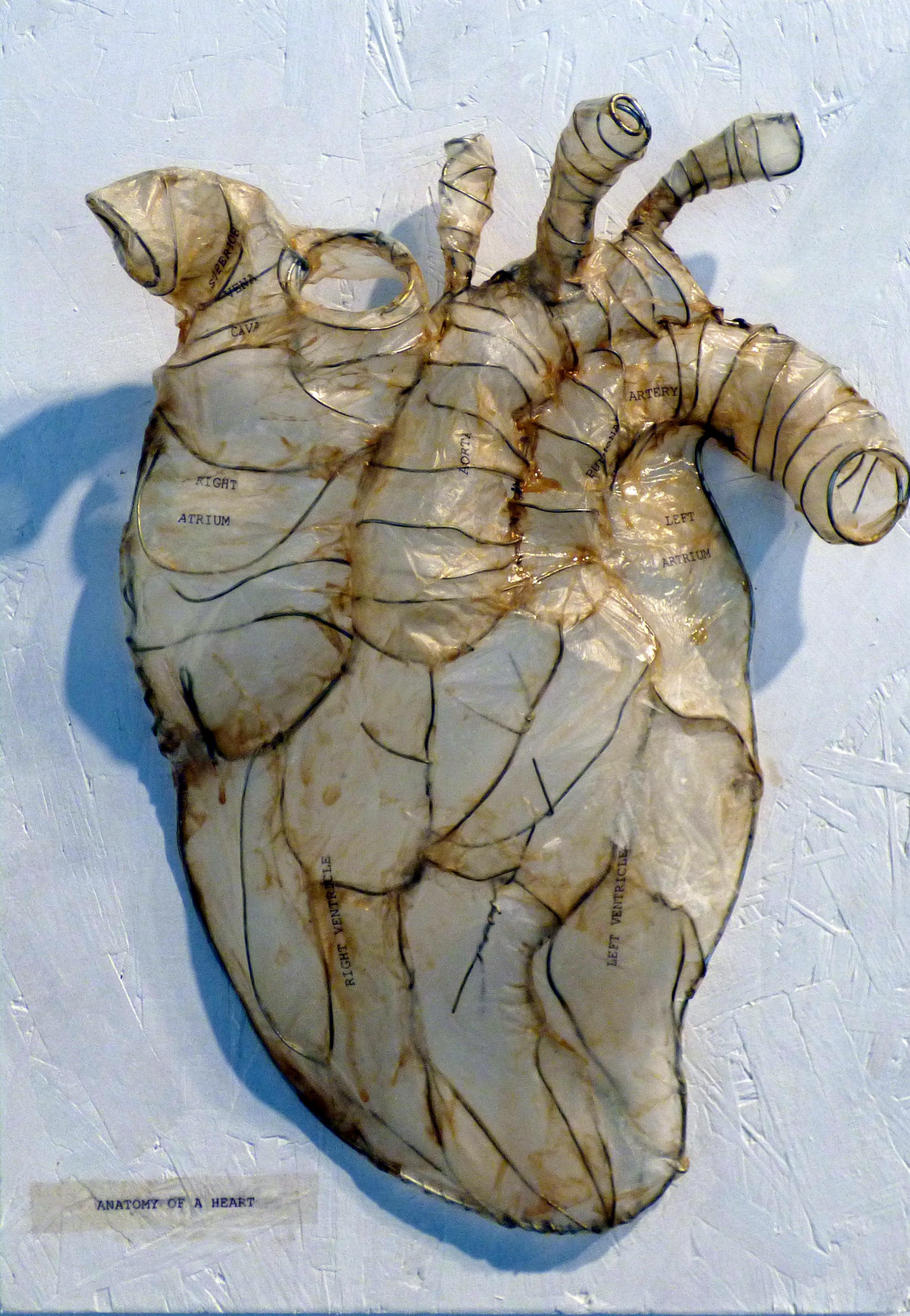 ANATOMY OF A HEART by Janine Walker, wire drawing. From The Heart exhibition, St Helens, Feb 2020