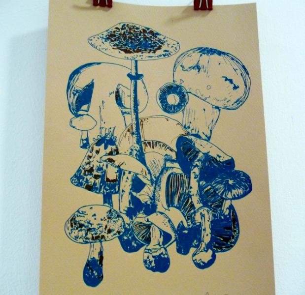 MUSHROOMS by Rachel Tillet