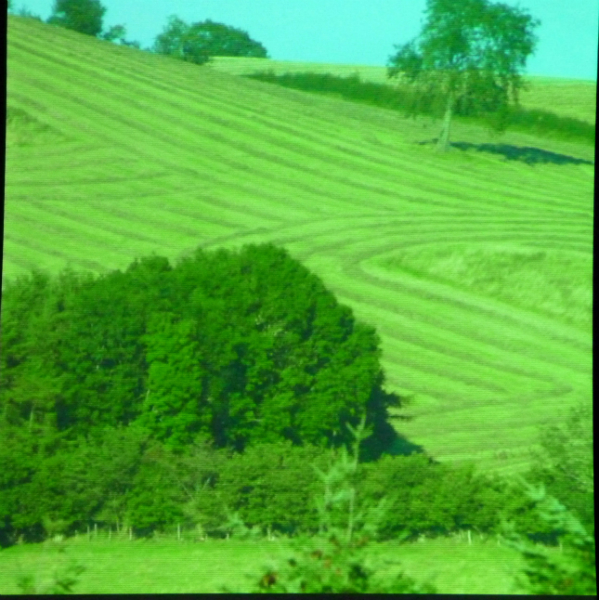 photo of the Shropshire countryside, an inspiration to Ruth Isset
