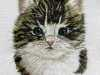 ALL YOU NEED IS THE LOVE OF A CAT!, needle painting with added embroidery stitches, Rose Bowl competition 2021