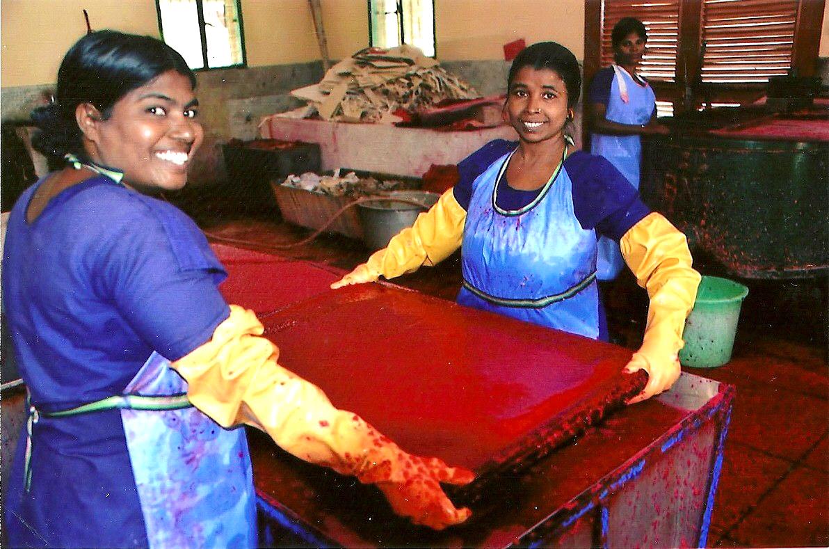 jute for paper making, Sreepur, Bangladesh 2014