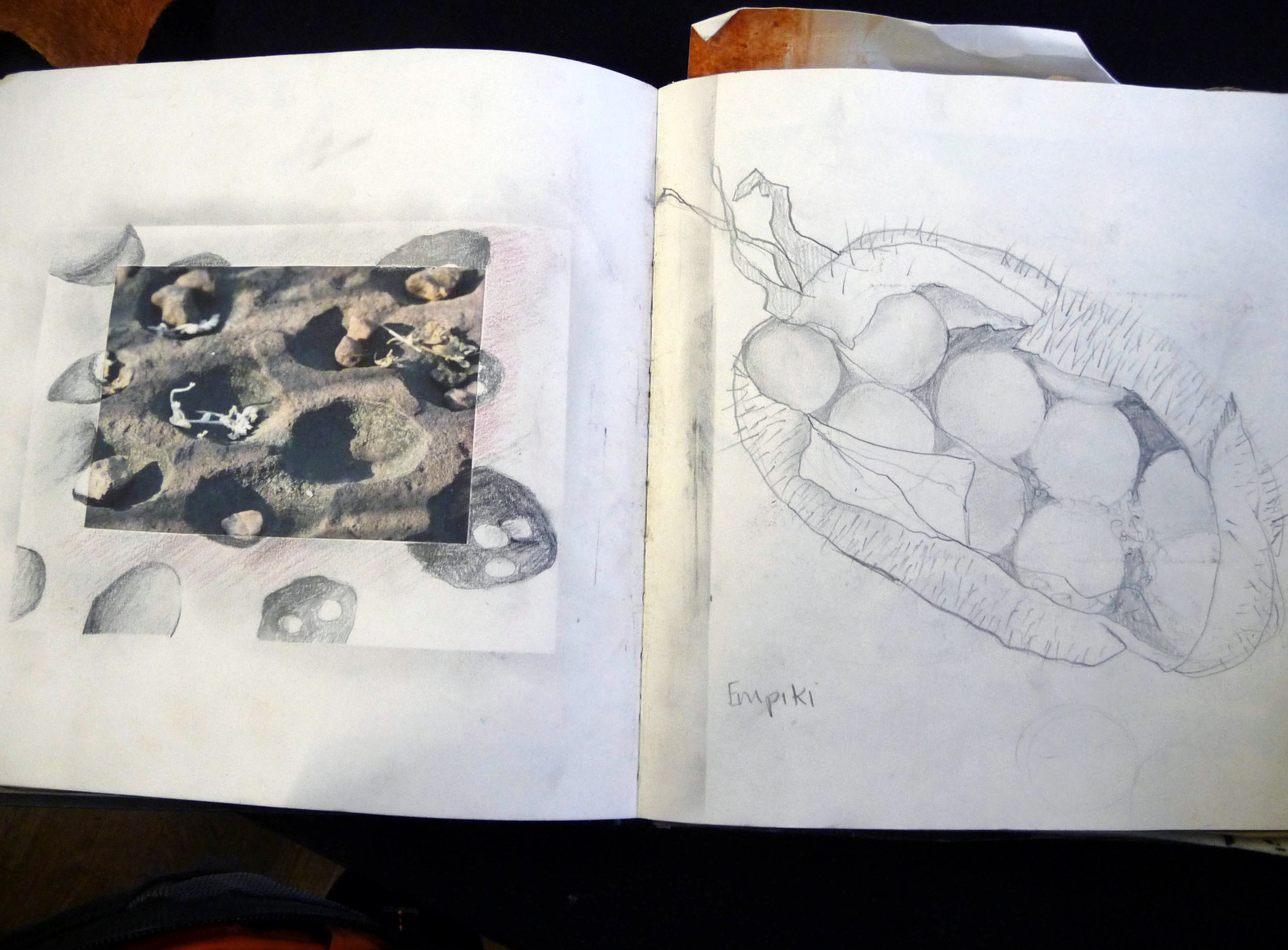 page from Bobby Britnall's sketch book