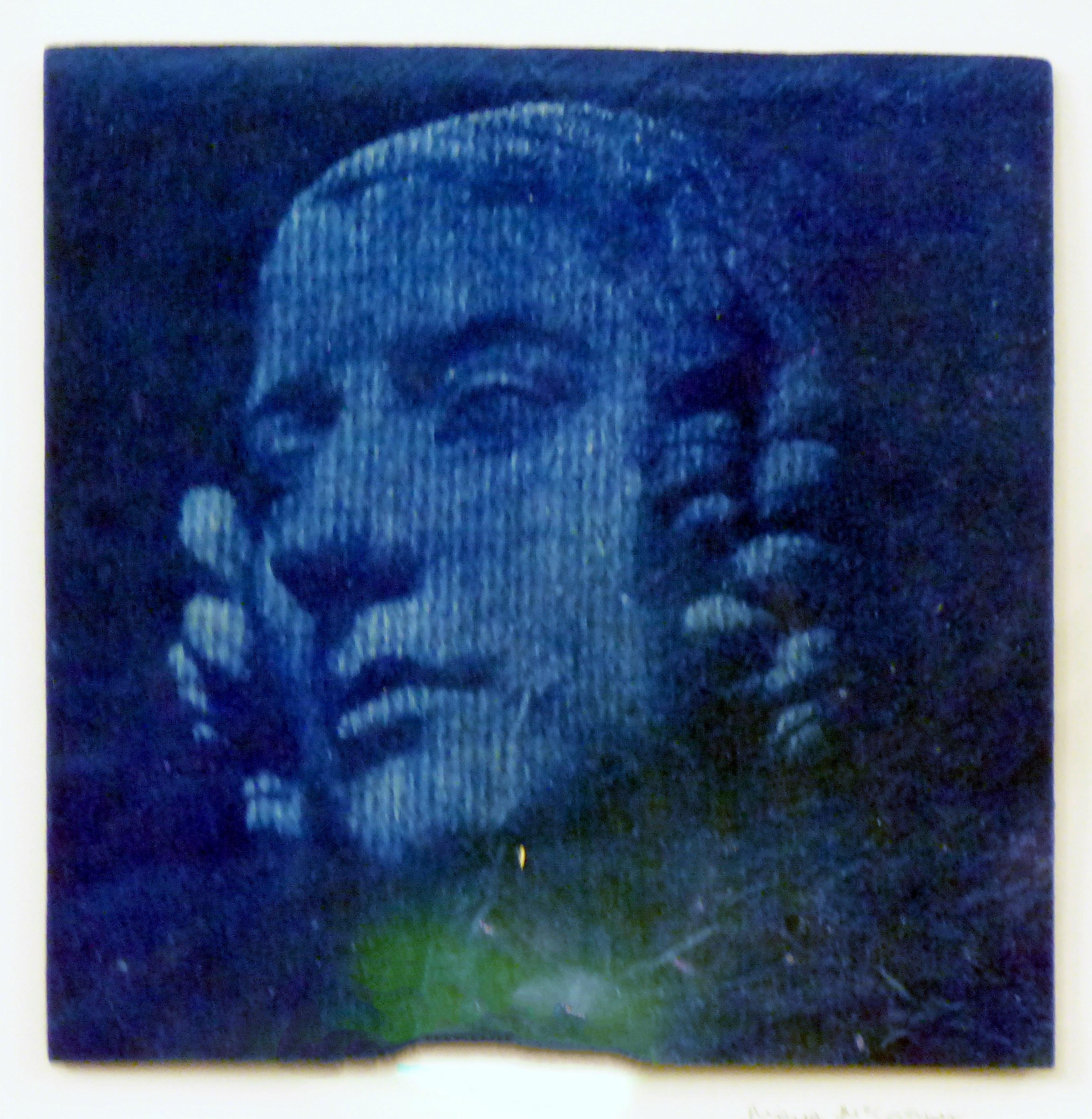 cyanotype image by Moya McCarthy, N.Wales EG