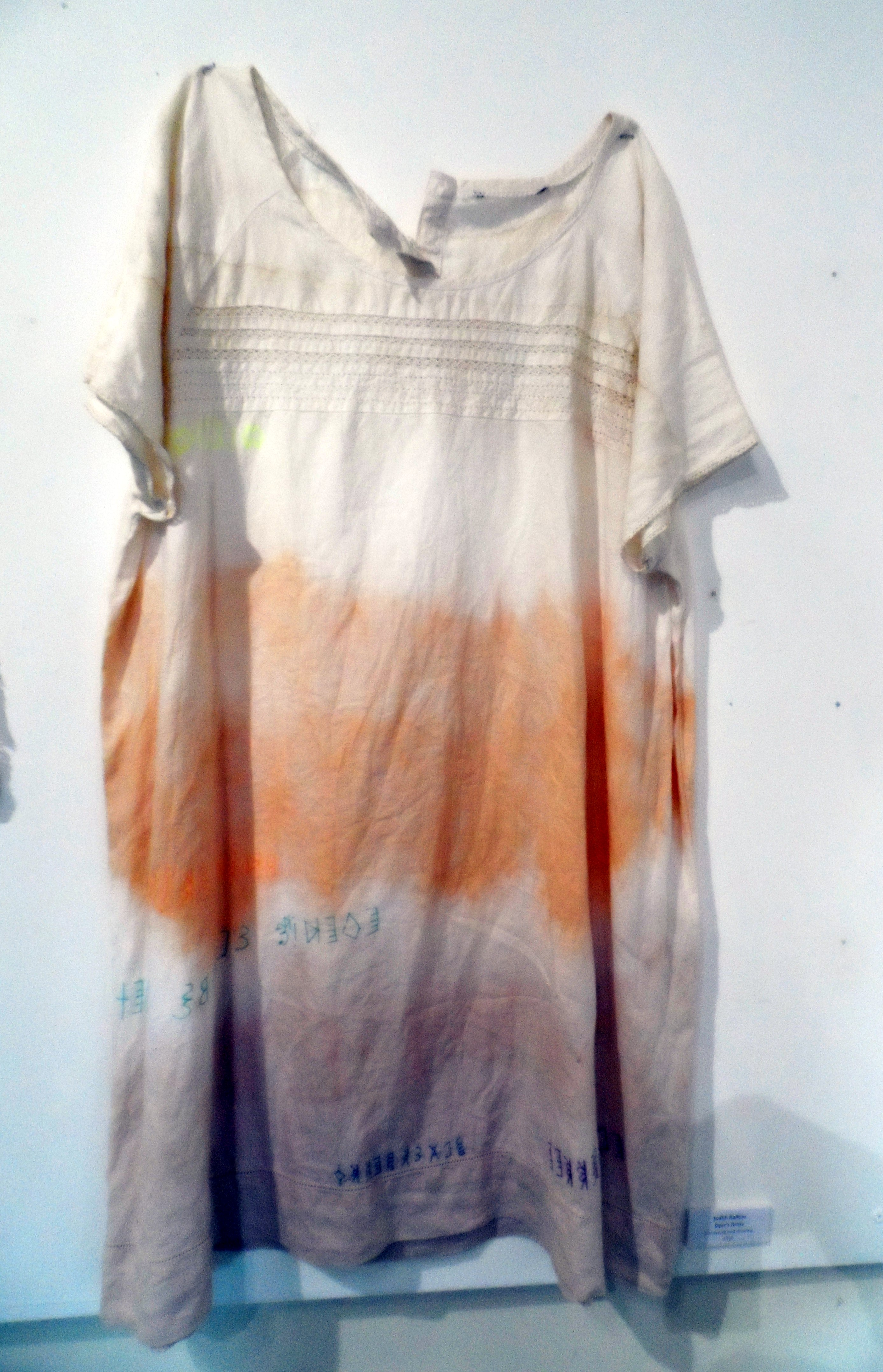 DYER's DRESS by Judith Railton, eco dyeing & printing, Re-View Textile Group, Frodsham 2019