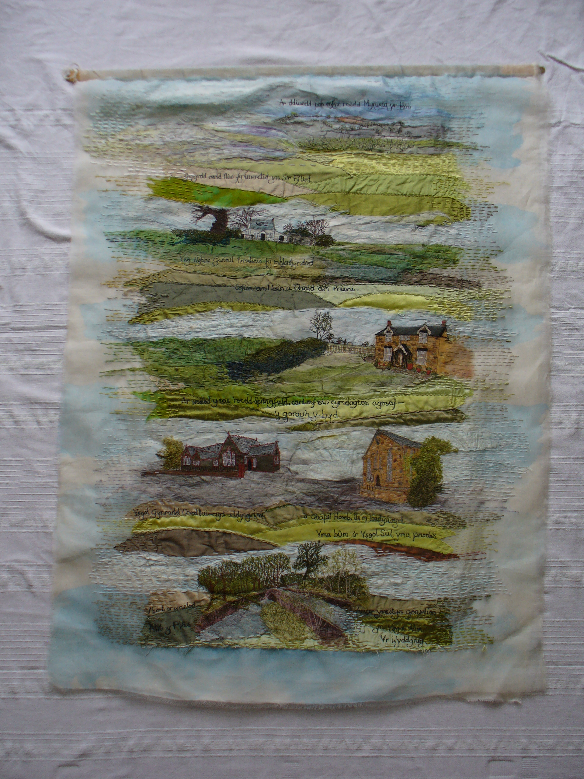 How Green Was My Flintshire by Ann Rogers