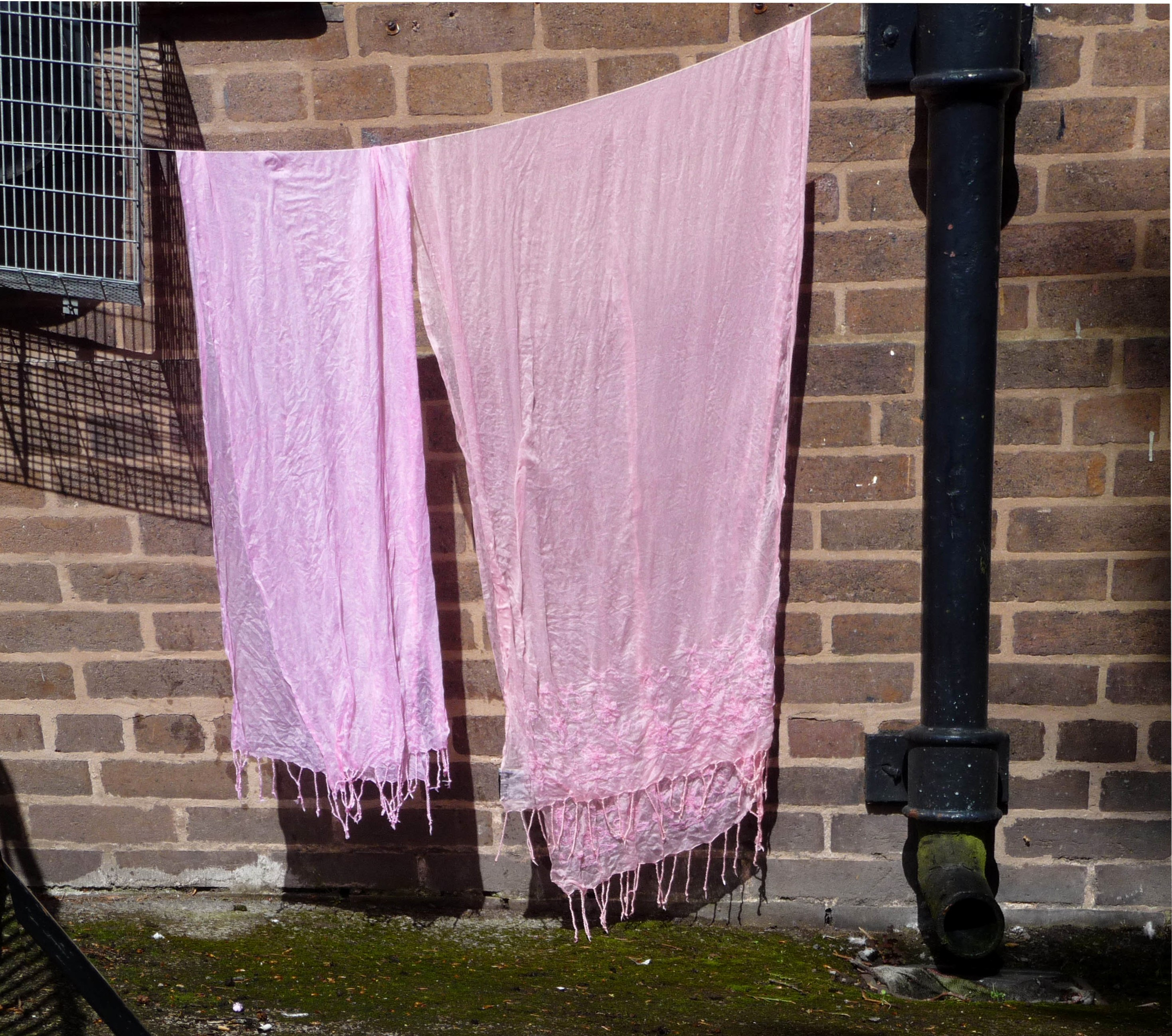 some of our dyed Sreepur scarves hanging in the sun to dry