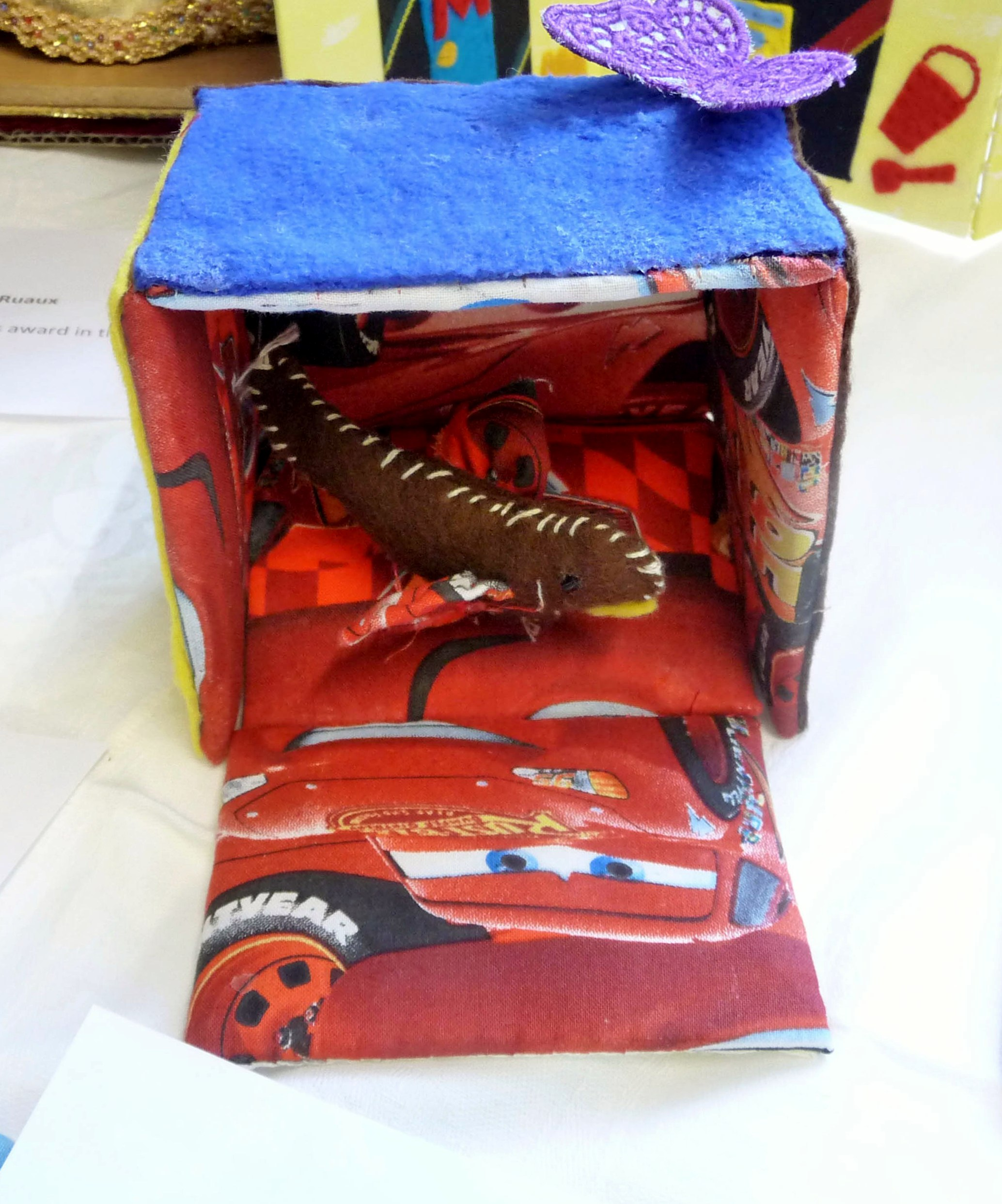 BUTTERFLY IN A BOX by Reuben Melhuish-Jones, age 5, Altrincham YE