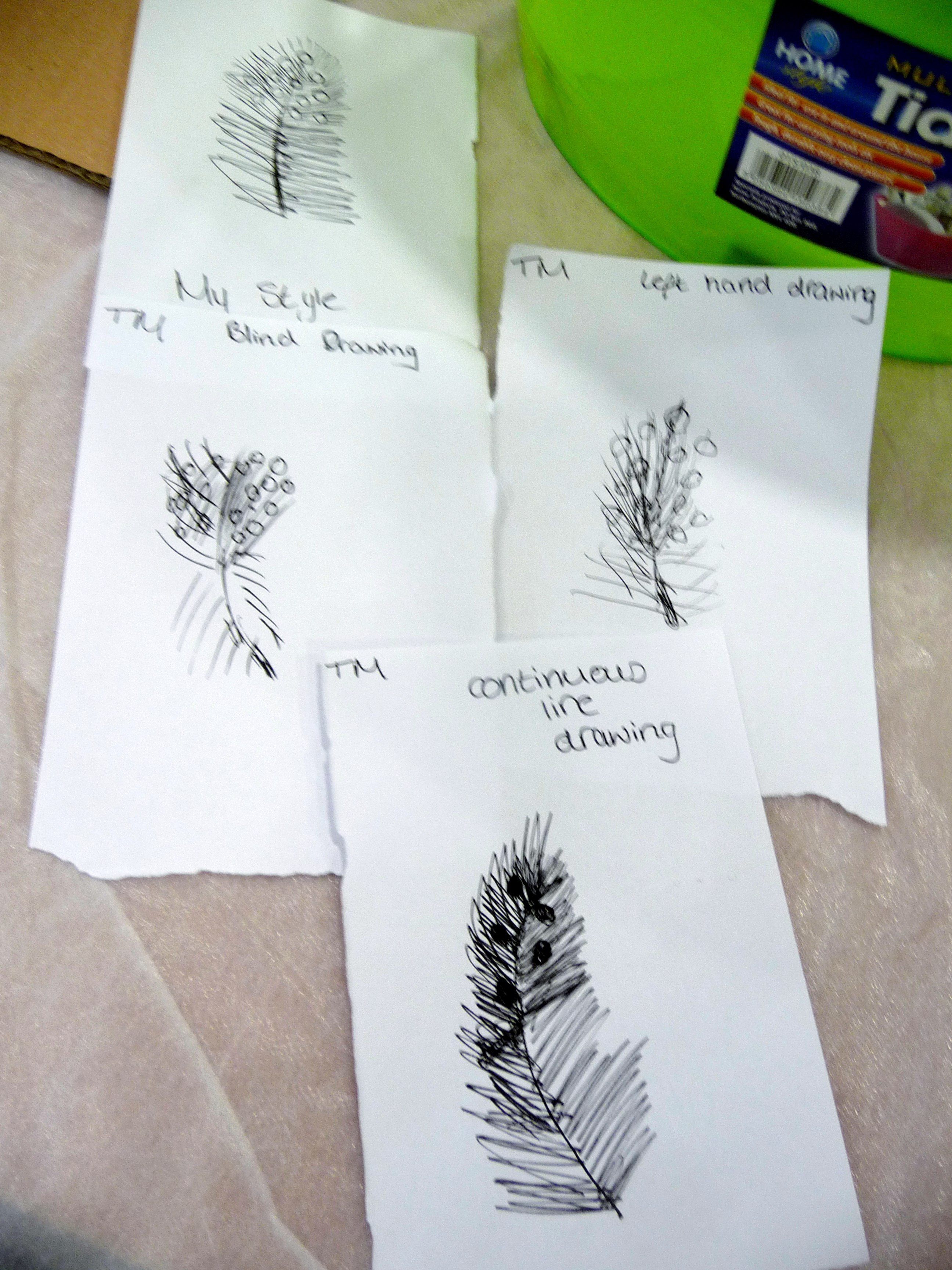 we made a series of feather drawings