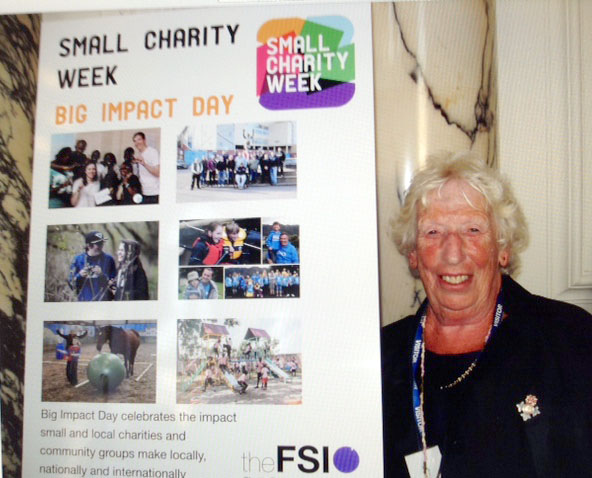 Rubina Porter MBE was invited to attend debate at House of Lords for Small Charities Week 2017