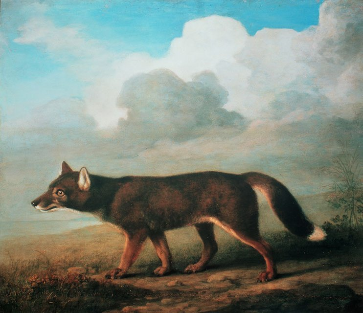 Portrait of a Large Dog by George Stubbs 1772