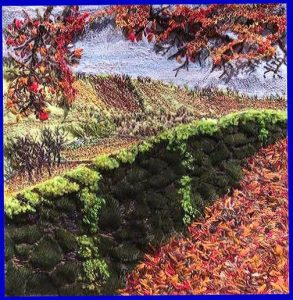 entry to MEG Christmas Competition 2020. Ist Prize Winner AN AUTUMN WALK ABOVE WINDERMERE by Patti Owen, machine embroidery
